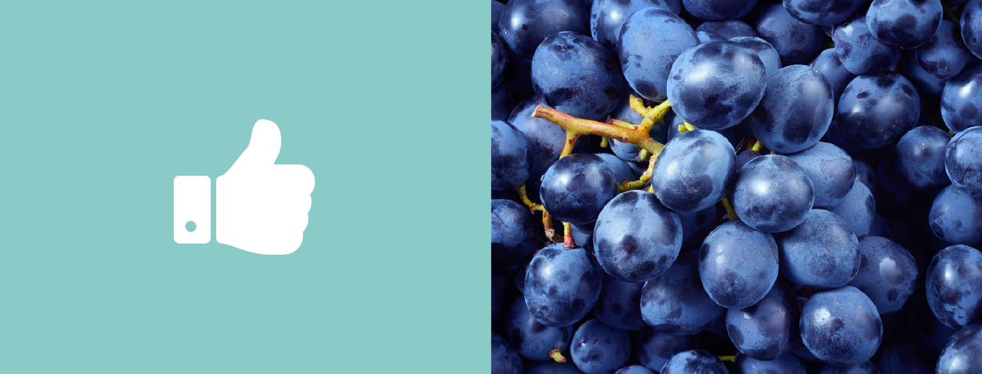 Desvendamos o Resveratrol: entenda os benefícios da substância
