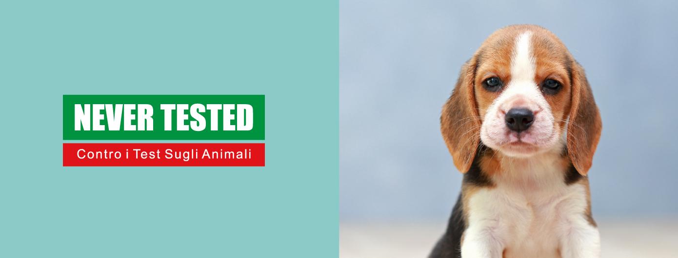 ADA TINA – A marca que não testa em animais
