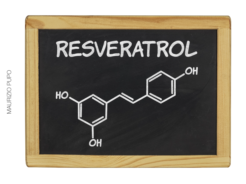 Resveratrol protege a pele da fumaça do cigarro